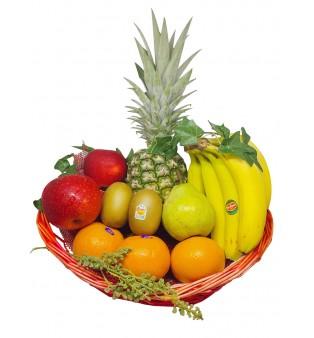 FRUITS BASKET- MAKE ME GO BANANAS